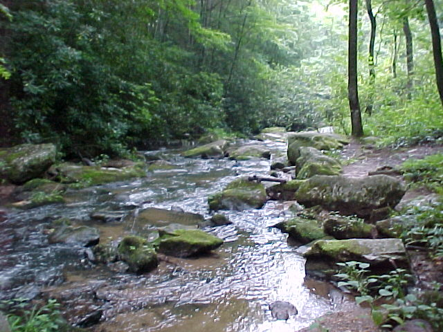 Trout Stream at Vacation Log Cabin Rentals, Hot Tubs, Creek, Trout Stream, Fireplace, Privacy & Seclusion at Fall Creek Cabins Near Boone, NC, Blowing Rock, NC, Valle Crucis, NC, West Jefferson, NC