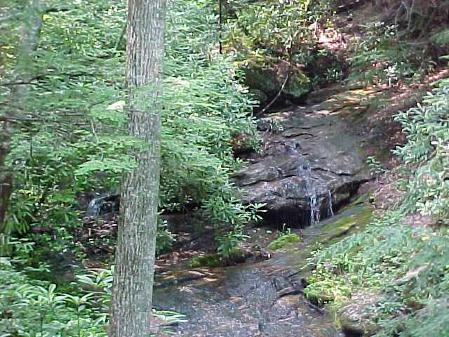 Green Branch Creek at Fall Creek Cabins Log Cabin Rentals Near Boone, NC and Blowing Rock, NC