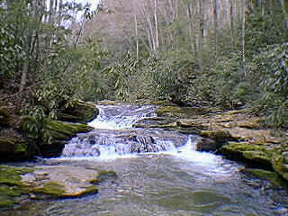 Fall Creek State Stocked Trout Stream, NC Mountains, Log Cabin Vacation Rentals, Boone, NC