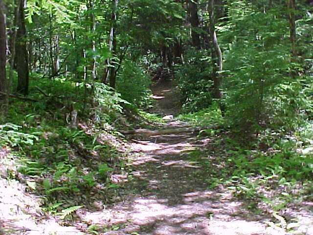 Hiking Trail, Foot Bridges, Trout Stream, Waterfalls, Vacation Rental Cabins, Boone, NC
