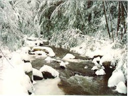 Fall_Creek_winter_2.jpg (23969 bytes)